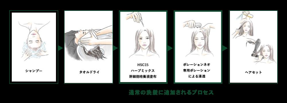 育毛プログラムプロセス
